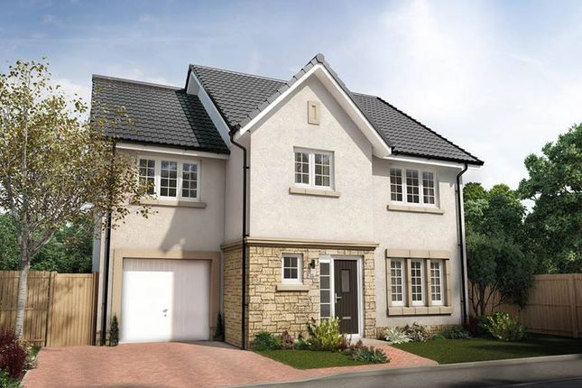 "Thumbnail Detached house for sale in ""The Bryce"" at Jardine Avenue, Falkirk"