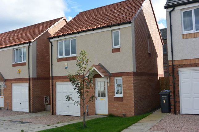 Thumbnail Detached house to rent in St. Michaels Yard, Dundee