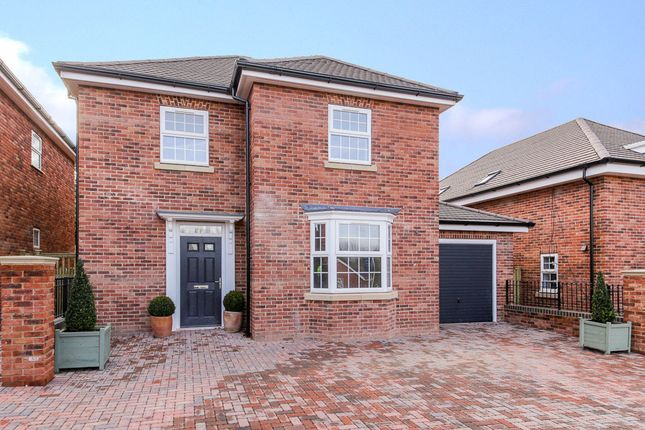 Thumbnail Terraced house for sale in Terrills Lane, Tenbury Wells