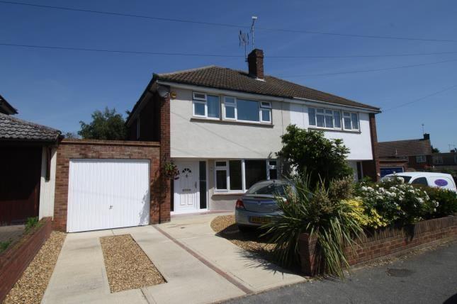 Thumbnail Semi-detached house for sale in Granger Avenue, Maldon