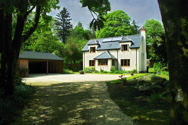 Thumbnail Detached house for sale in Auchendoon Road, Newton Stewart