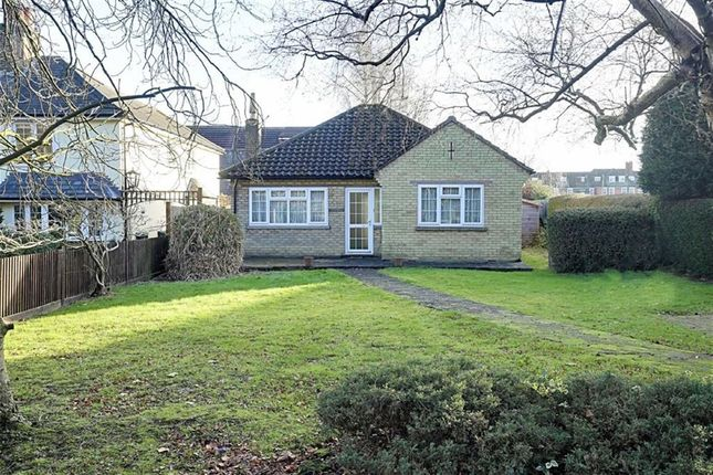 Thumbnail Detached bungalow for sale in The Plain, Epping