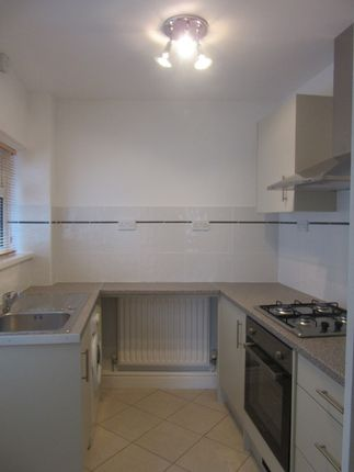 3 bedroom terraced house to rent in Evans Terrace, Mount Pleasant, Swansea. 6Yh.