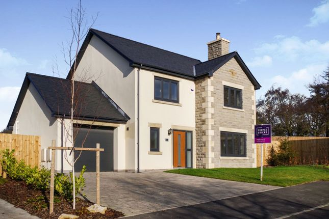 Thumbnail Detached house for sale in Briar Lea, Nether Kellet