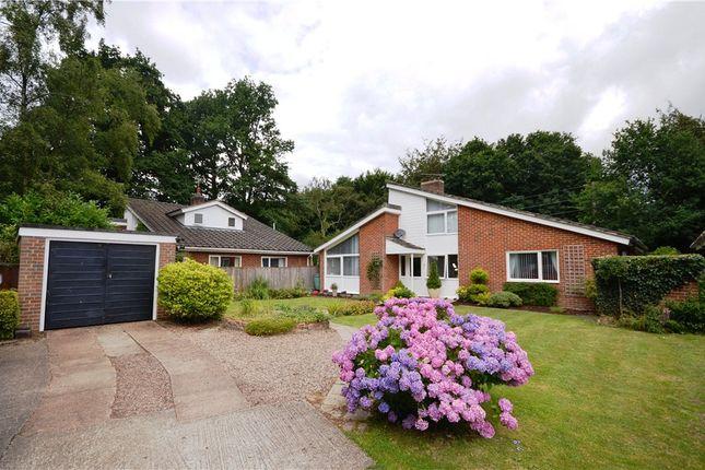 Thumbnail Detached house for sale in Conifer Close, Baughurst, Tadley