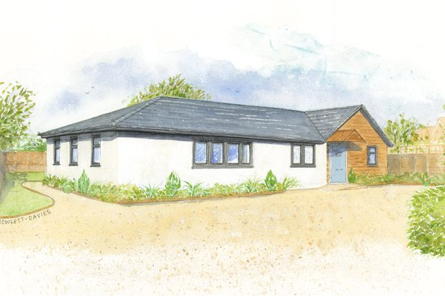 Thumbnail Bungalow for sale in Church Street, Ropley, Alresford, Hampshire