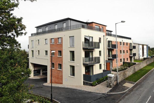 Thumbnail Flat to rent in 188 Newtownbreda Road, Belfast
