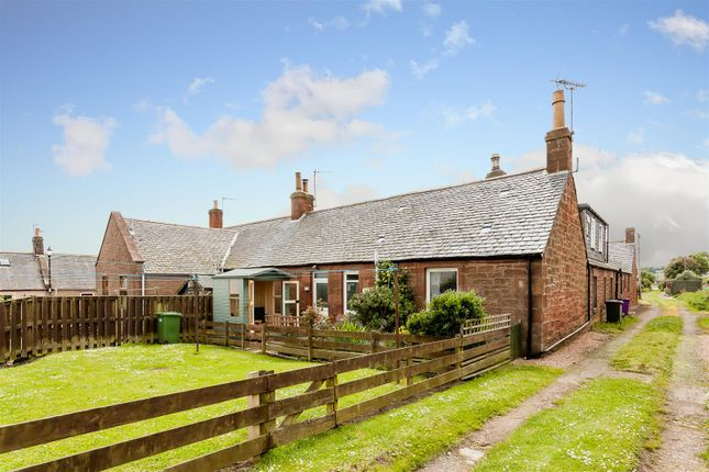 Thumbnail Semi-detached bungalow for sale in Fountain Square, Auchmithie, Arbroath