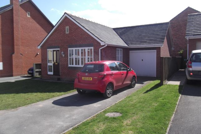 Thumbnail Bungalow to rent in Swallows Meadow, Castle Caereinion, Welshpool