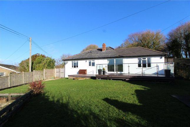 Thumbnail Detached bungalow to rent in Askerswell, Dorchester