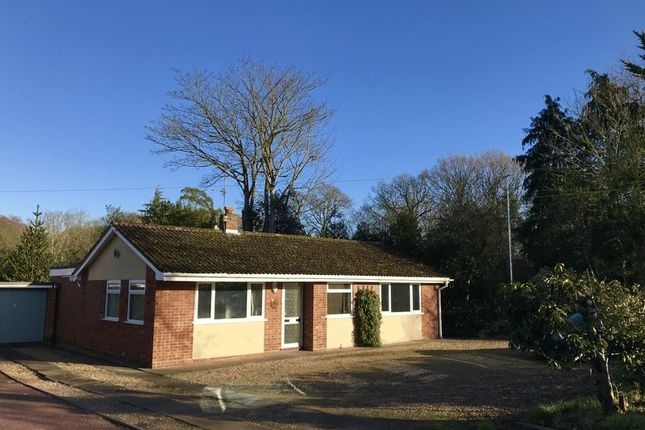 Thumbnail Detached bungalow for sale in High Road, Burgh Castle, Great Yarmouth