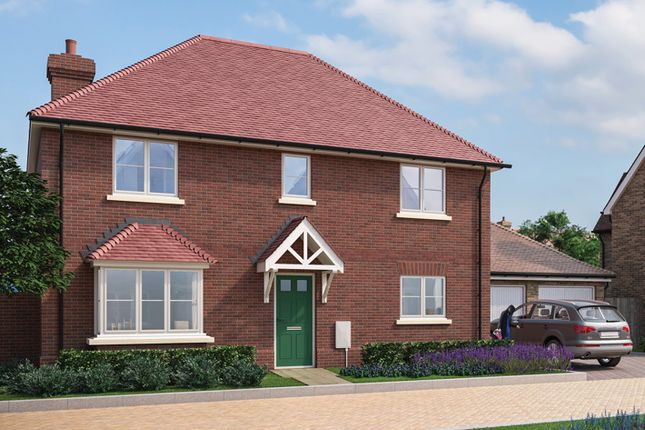 "Thumbnail Property for sale in ""The Langford"" at Park Drive, Maldon, Essex"