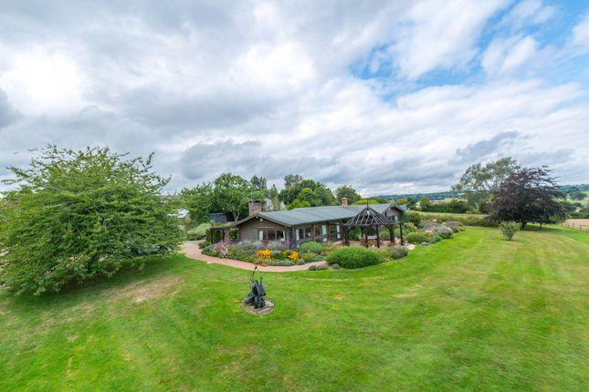 Thumbnail Farm for sale in Lossenham Lane, Newenden