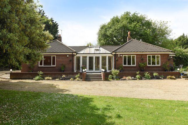 Thumbnail Detached bungalow for sale in Suton Street, Suton, Wymondham