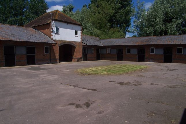 Thumbnail Equestrian property to rent in Front Street, East Garston