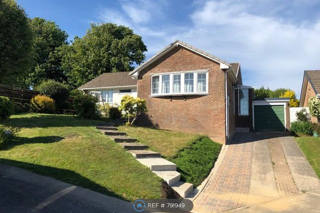 Thumbnail Bungalow to rent in Groes Ffordd Fach, Carmarthen