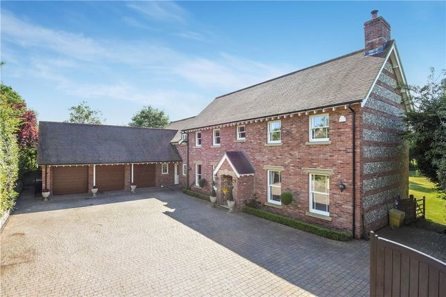 Thumbnail Detached house for sale in Gussage St Michael, Wimborne