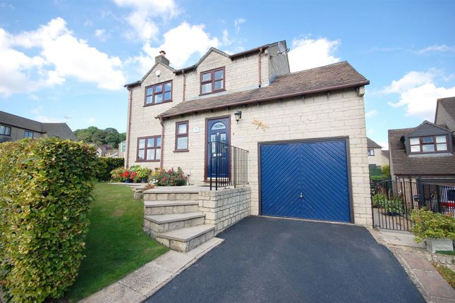Thumbnail Detached house for sale in Peghouse Rise, Uplands, Stroud