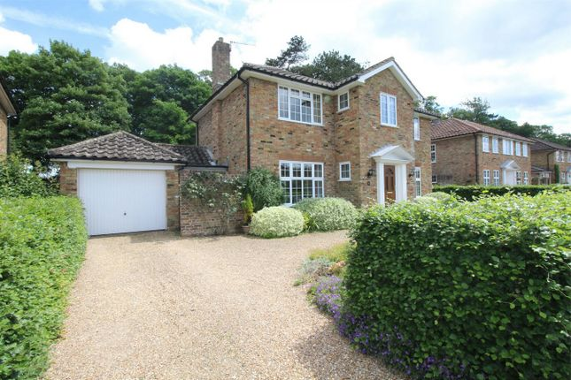 Thumbnail Detached house for sale in Curtis Road, Alton
