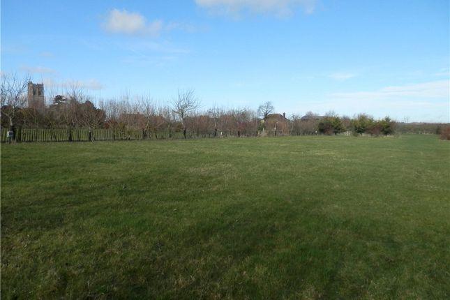 Thumbnail Land for sale in Muchelney, Langport, Somerset