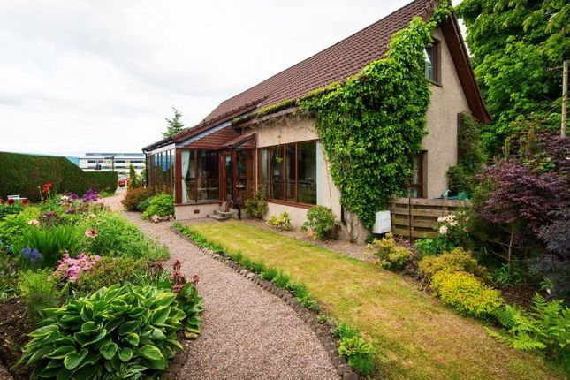 Thumbnail Commercial property for sale in 79 Muirs, Kinross