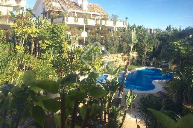 Spain, Costa Del Sol, Marbella, Golden Mile / Marbella Centre, Mrb6273
