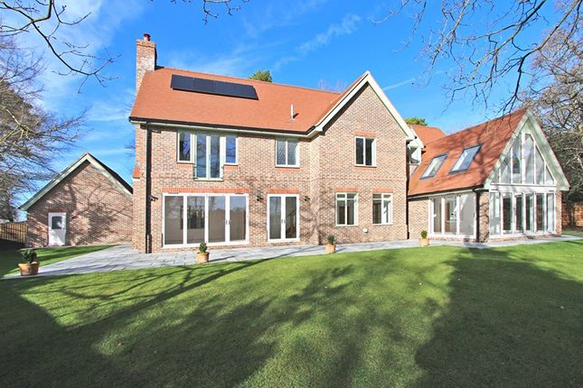 Thumbnail Detached house for sale in Woodbury, Brockenhurst