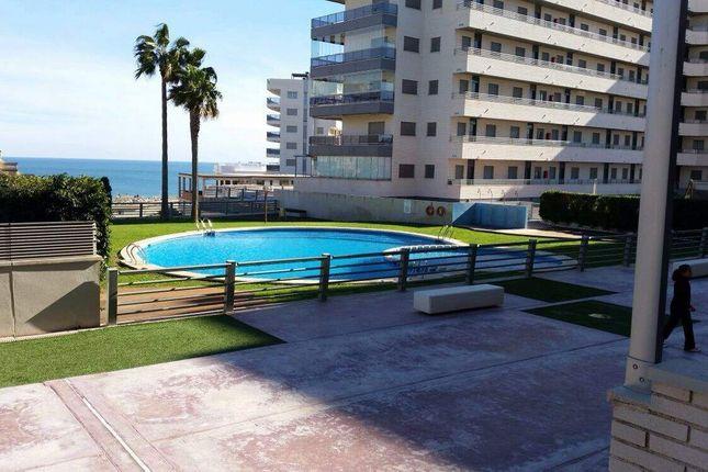 Alicante, Alicante, Spain