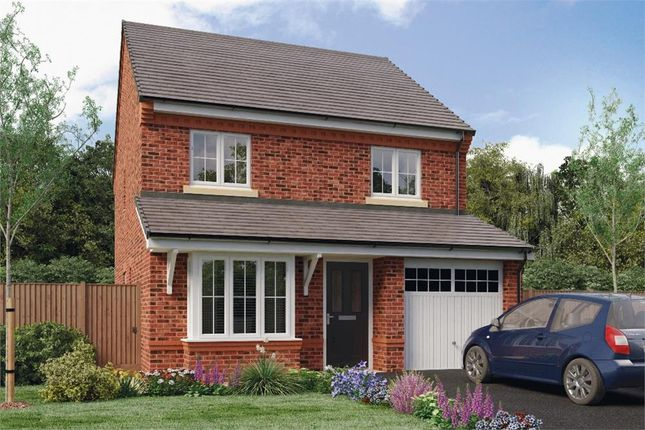 """Thumbnail Detached house for sale in """"Hallam"""" at Honeywell Lane, Barnsley"""
