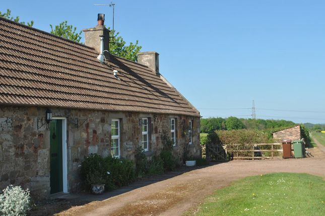 Thumbnail Cottage to rent in 3 Peastonbank Cottages, Peastonbank, East Lothian