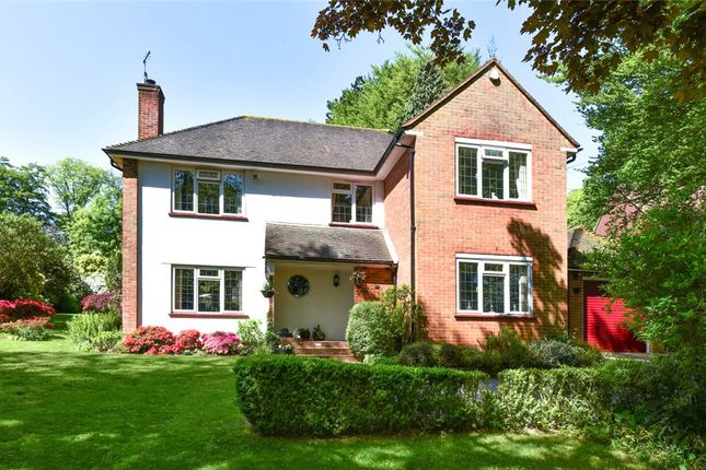 Thumbnail Detached house for sale in Ashley Road, Farnborough, Hampshire