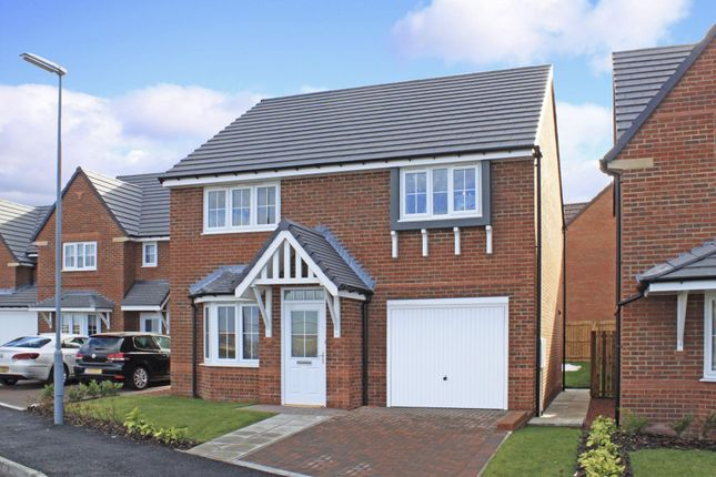 "Thumbnail Detached house for sale in ""Tavistock"" at Ponds Court Business, Genesis Way, Consett"