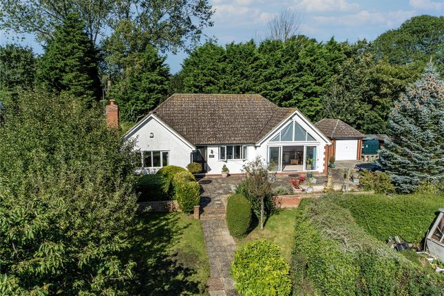 Thumbnail Bungalow for sale in Sages End Road, Helions Bumpstead, Haverhill, Essex