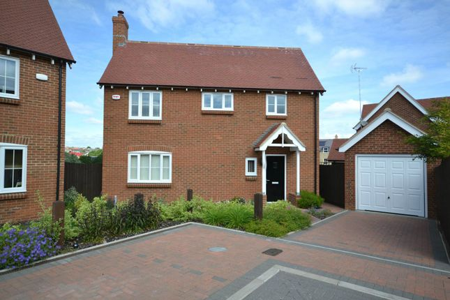 Thumbnail Detached house to rent in Mill Park Drive, Braintree, Essex