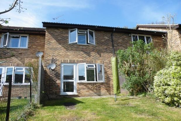 Thumbnail Property to rent in Bow Field, Hook