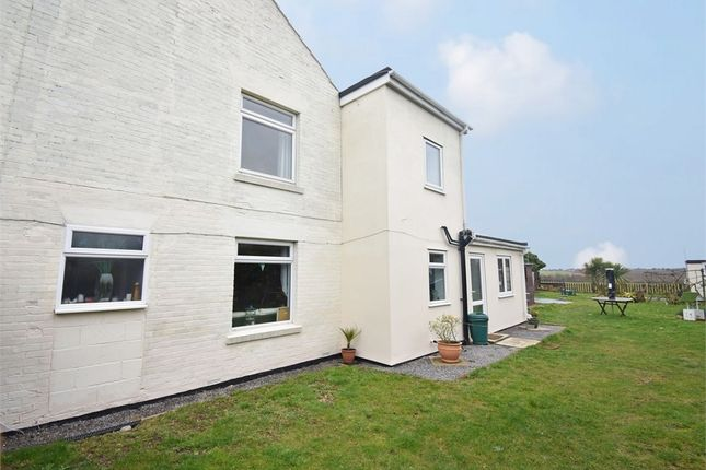 Thumbnail Semi-detached house for sale in Tinker Street, Ramsey, Harwich, Essex