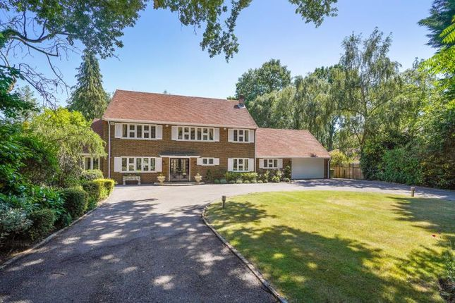 Thumbnail Property to rent in Onslow Road, Burwood Park, Walton On Thames