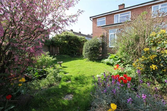 Thumbnail End terrace house for sale in Goodwood Close, Hoddesdon