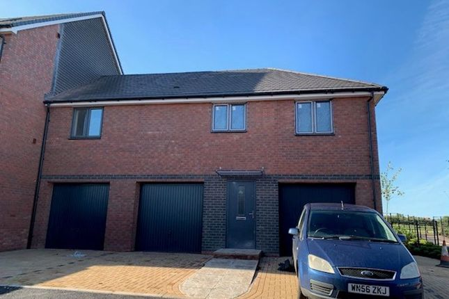 Thumbnail Property to rent in Murch Rise, Exeter