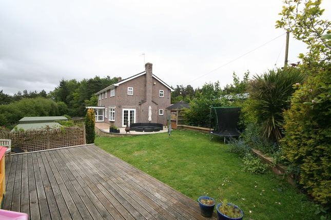 Thumbnail Detached house for sale in Huntick Road, Lytchett Matravers, Poole