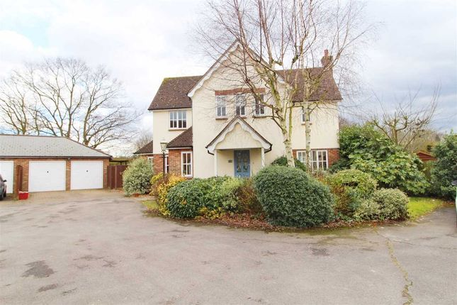 Thumbnail Detached house for sale in Willow Close, Ardleigh, Colchester