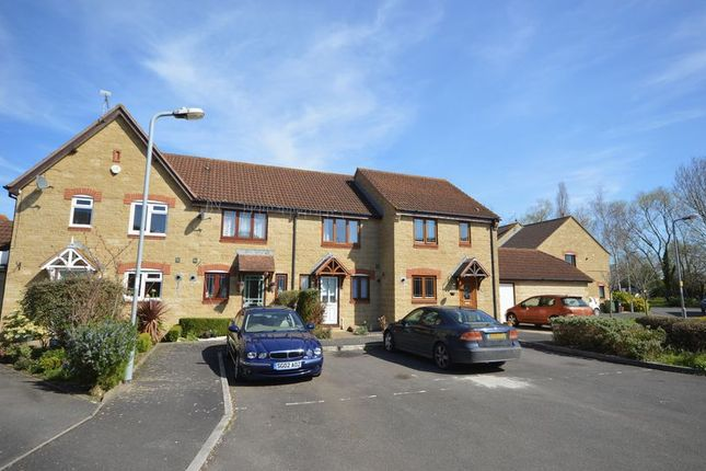 Thumbnail Terraced house to rent in Hills Orchard, Martock