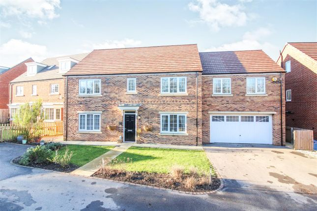Thumbnail Detached house for sale in Aspen Way, Beverley