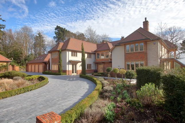 Thumbnail Detached house for sale in Highwood, Ringwood