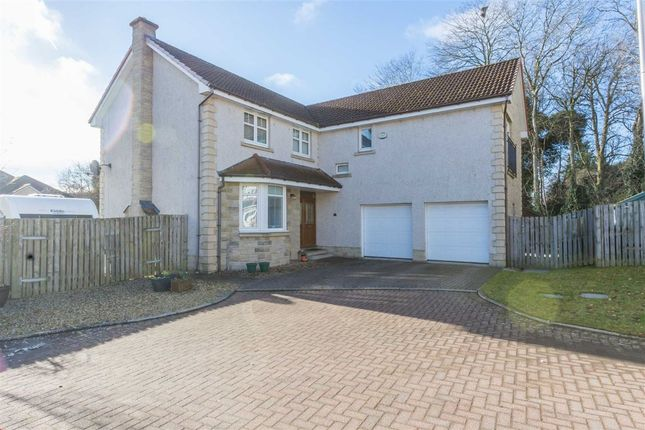 Thumbnail Detached house for sale in Ross Avenue, Perth, Perthshire