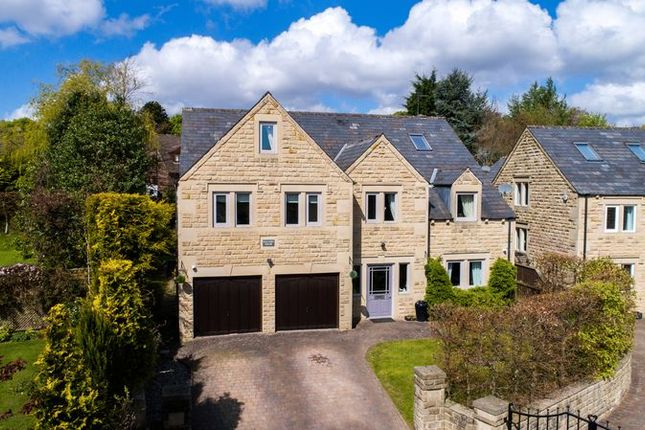 Thumbnail Detached house for sale in Newfield Place, Dore, Sheffield