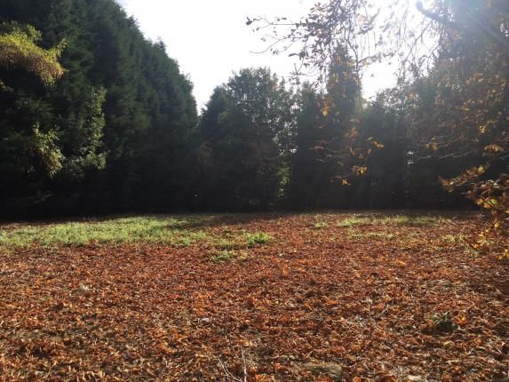 Thumbnail Land for sale in Runnymede Road, Darras Hall, Ponteland, Northumberland
