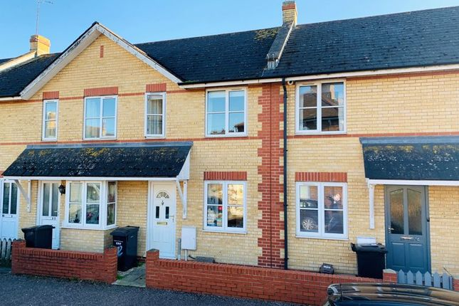 Thumbnail Terraced house to rent in Rupert Street, Taunton