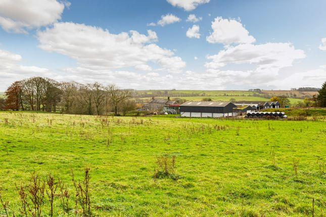Thumbnail Farm for sale in Town Head Farm, West Hall, Brampton, Cumbria