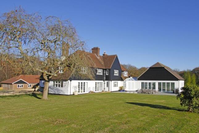 Thumbnail Equestrian property for sale in Orltons Lane, Rusper, Horsham, West Sussex